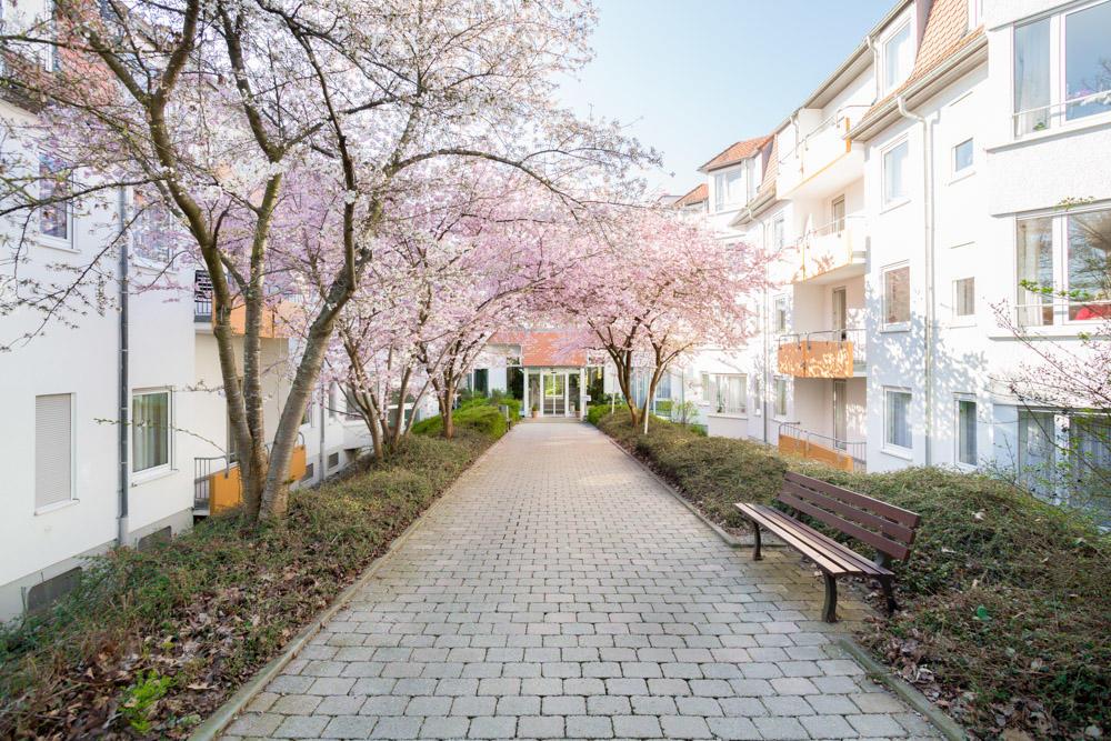 Haus Edelberg Senioren-Zentrum Wetzgauer Berg